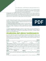 PLEXO LUMBO SACRO,OSTIOMIELITIS, A. SEPTICA