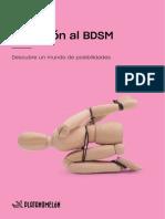 Guia de Iniciacion Al BDSM