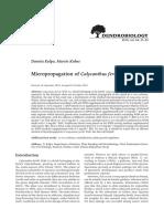 Micropropagation of Calycanthus fertilis