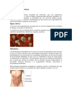 8 enfermedades parasitarias
