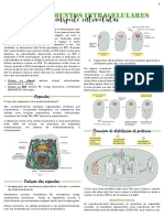 Compartilhamento de endomembranas