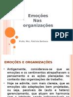 Emoções nas organizações