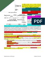 4-Biología-Plan-Común-Guía-Flujo-de-información-génica