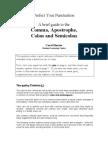 Punctuation Brief Guide