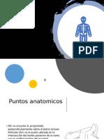 cefalometria .pptx
