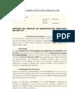 APELACION DE PAPELETA DE TRANSITO