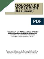 A Sociologia - Resumen.pdf