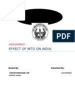 Wto Assignment