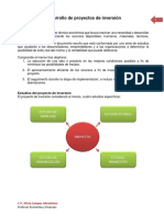 Desarrollo de proyectos de inversión.pdf
