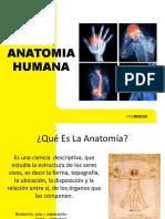 07 Anatomia