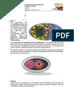 EDICCION DE IMAGENES SEMANA 5.pdf