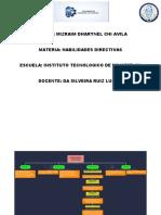 Habilidades Dharynel Chi.docx