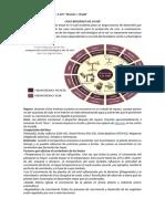 CICLO BIOLÓGICO DE LA VID (Guía y Práctico n7) 4to 1ra   y   4to 2da.pdf