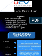 Enfoques del Currículo