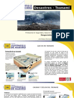 Tsunami John Bermudez.pptx