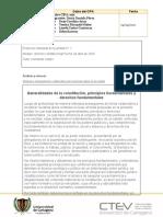 PROTOCOLO GRUPAL CONSTITUCION POLITICA.docx
