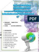 Informe Final de Cultura Ambiental Final