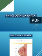 PATOLOGIA MAMARIA.ppt