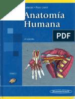 Generalidades Concernientes Al Esqueleto, Las Articulaciones y Los Músculos