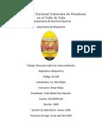 RESUMEN DE LAS MACROMOLÉCULAS FUNDAMENTALES DE LA VIDA