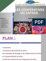 exposé final cooperative safrane.pptx