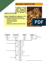 Curs 7 TG.pdf