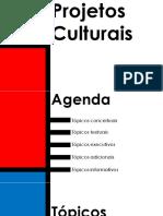 Aula principais topicos de projetos culturais