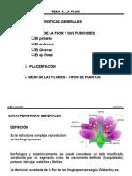 Tema 6.1 La Flor parte 1