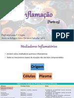 Aula - Inflamação (parte3)