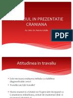 06_proba_de_travaliu