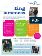 ppe-lameness-poster-9266-1