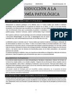 APUNTS PEM 1R PARCIAL.pdf