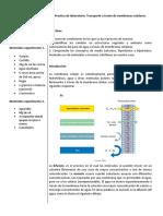 Laboratorio de Ósmosis_virtual2.pdf