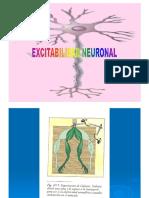 4. EXCITB NEURONAL-aja