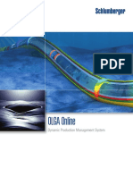 OLGA_Online_Brochure.pdf