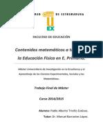 TFMUEX_2015_Triviño_Estevez.pdf