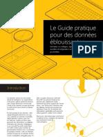 FR-CNTNT-eBook-DIYGuideDazzlingData