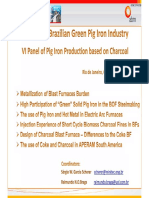Brazilian green pig iron industry