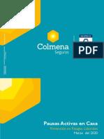 5.Pausas activas 2020.pdf