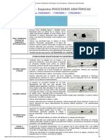 Posiciones Anatómicas Quirúrgicas y No Quirúrgicas - Esquemas OposSanidad