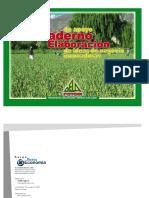 Cuaderno_de_Elaboracion_de_Planes_de_Neg.pdf