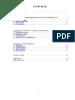 228169714-Hepatita-b.doc