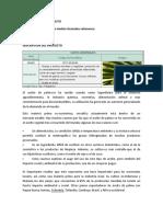 ACEITE DE PALMA EN BRUTO