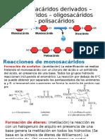 Monosacáridos derivados – disacáridos – oligosacáridos - polisacáridos