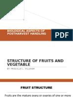 BIOLOGICAL Aspect Report Priscilla L. Villaver.pptx