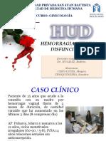 DIAPOS HUD.pdf