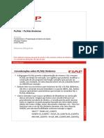 PLSQL 10 - SQL Dinamico