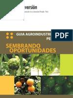 ProInversion-SembrandoOportunidades2007