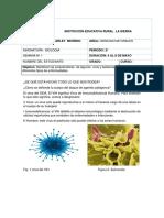 taller grado 8º   virus y bacterias