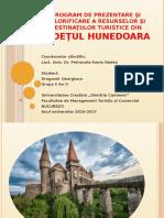 374200355 Judetul Hunedoara Potential Turistic